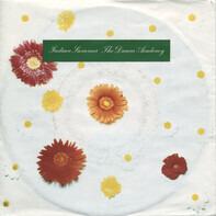 The Dream Academy - Indian Summer