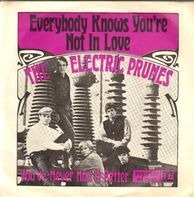 The Electric Prunes - Everybody Knows You're Not In Love