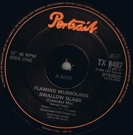 The Flaming Mussolinis - Swallow Glass (Extended Remix)