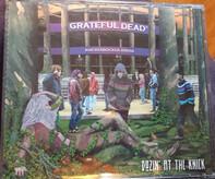 The Grateful Dead - Dozin' At The Knick