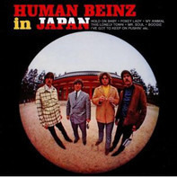 The Human Beinz - In Japan