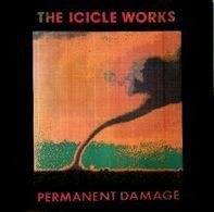 The Icicle Works - Permanent Damage