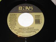 The Kentucky Headhunters - Singin' The Blues