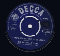 The Nashville Teens - I Know How It Feels To Be Loved
