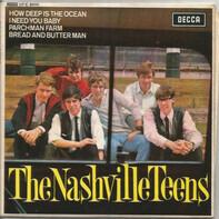 The Nashville Teens - The Nashville Teens