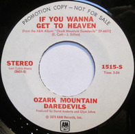 The Ozark Mountain Daredevils - If You Wanna Get To Heaven