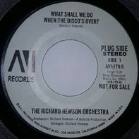 The Richard Hewson Orchestra - What Shall We Do When The Disco's Over?