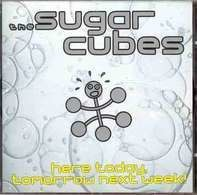 The Sugarcubes - Here Today,Tomorrow Next Week!