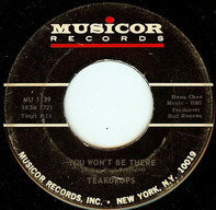 The Teardrops - You Won't Be There