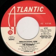 The Trammps - Breathtaking View