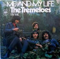 The Tremeloes - Me And My Life