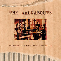 The Walkabouts - The Virgin Years: Devil's Road • Nighttown • Bruxelles