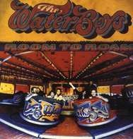 The Waterboys - Room to Roam
