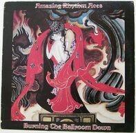 The Amazing Rhythm Aces - Burning the Ballroom Down