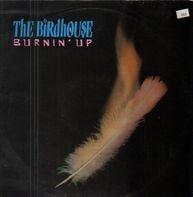 The Birdhouse - Burnin' Up