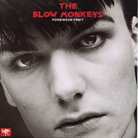 The Blow Monkeys - Forbidden Fruit