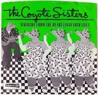 The Coyote Sisters - Straight From The Heart (Into Your Life)