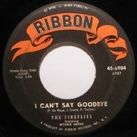 The Fireflies - I Can't Say Goodbye