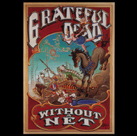 The Grateful Dead - Without a Net