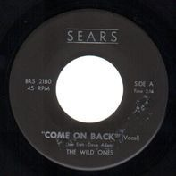 The Wild Ones - Come On Back