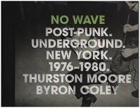Thurston Moore, Byron Coley - No Wave: Post-Punk. Underground. New York 1976-1980