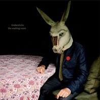 Tindersticks - The Waiting Room (vinyl)