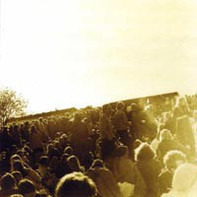 Träd, Gräs Och Stenar - Gärdet 12.6.1970