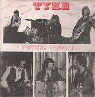 Tyke - Picture Postcard