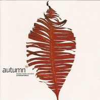 Freestylers, DJ Hell, PM Dawn a.o. - Autumn 98 - Rough Trade Records Schwerpunkte