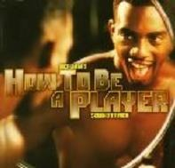 Foxy Brown, Redman, a.o. - Def Jam's How To Be A Player Soundtrack