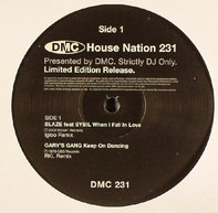 Blaze, Gary's Gang, Sybil, a.o. - House Nation 231