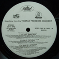 Beastie Boys, Fugees, A Tribe Called Quest, De La Soul, KRS-1 & Biz Markie With Cool V - Selections From The Tibetan Freedom Concert