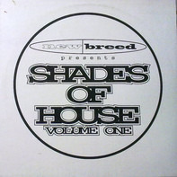 Hustlers of Culture, F.uzion, Headshock a.o. - Shades Of House Volume One
