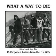 The Pleasure Seekers, The Knaves, The Renegades - What A Way To Die