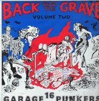 Canadian Rogues a.o. - Back From The Grave Volume Two