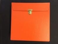 Vintage SchallplattenKoffer - in orange, für ca. 30 LPs