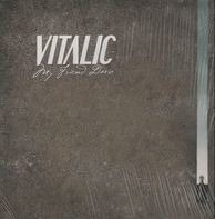 Vitalic - My Friend Dario
