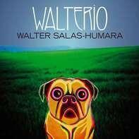 Walter Salas-Humara - Walterio (black Vinyl)
