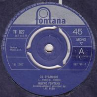 Wayne Fontana - 24 Sycamore