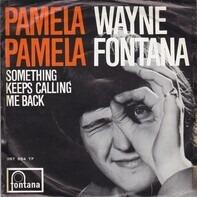 Wayne Fontana - Pamela, Pamela
