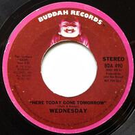 Wednesday - Here Today Gone Tomorrow