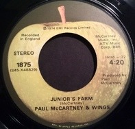 Wings - Junior's Farm / Sally G