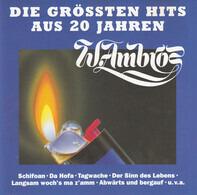 Wolfgang Ambros - Die Grössten Hits Aus 20 Jahren
