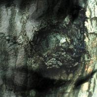Yann Tiersen - LA Valse Des Monstres/ The Waltz Of The Monst