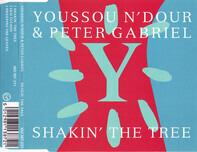 Youssou N'Dour & Peter Gabriel - Shakin' The Tree