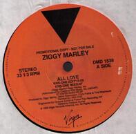 Ziggy Marley - All Love (KRS-One Edit)