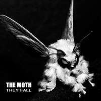 The Moth - They Fall