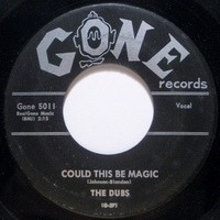 The Dubs - Could This Be Magic / Such Lovin'