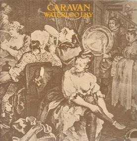 Caravan - Waterloo Lily