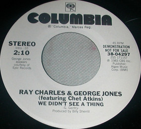 Ray Charles - We Didn't See A Thing
